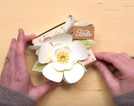 Magnolia Lane flower.JPG